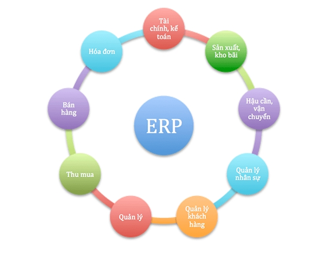 ERP Là Gì – Hệ Thống Quản Lý Đa Năng Cho Kinh Doanh Nhà Hàng