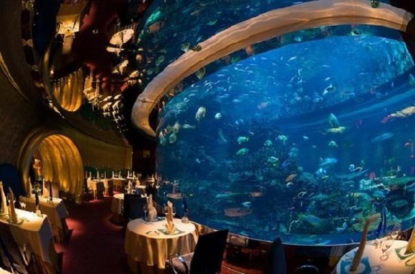 bể cá bên trong khách sạn